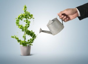 How To Grow A Business Successfully?