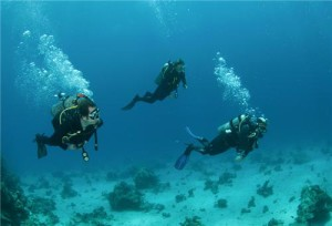 Top 10 Water Adventure Activities to Experience in Goa